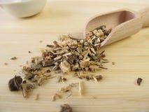 Echinacea root, Echinaceae angustifoliae radix Stock Image