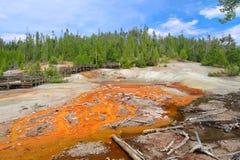Echinus Geyser Yellowstone Royalty Free Stock Photo
