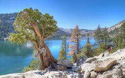 ECHO LAKE, CALIFORNIA, UNITED STATES - Sep 18, 2019: Echo Lake forested shoreline