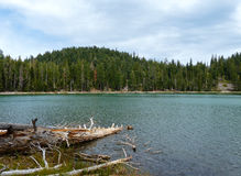 Echo Lake. Lassen National Forest, Northern California Royalty Free Stock Photography