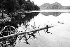 Echo Lake, Maine Fotografia Stock