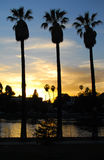 Echo Park Sunset, Los Angeles II Immagine Stock
