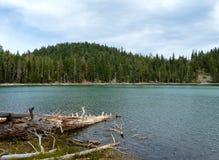 echowy jezioro Fotografia Royalty Free