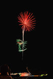 Echt Vuurwerk, Bloemenpatroon met persoon en bezinning over de voorgrond Stock Afbeelding