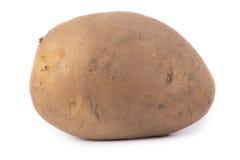 Echte aardappel Stock Afbeeldingen