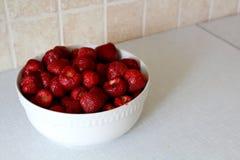 Echte Aardbeien Royalty-vrije Stock Afbeeldingen