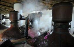Echte Bulgaarse Damascena nam toe Stock Foto's