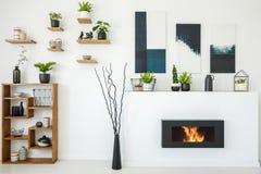 Echte foto van een bioopen haard naast een houten boekenkast met orn stock afbeelding