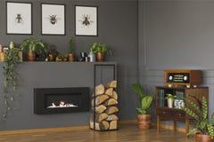 Echte foto van een uitstekend woonkamerbinnenland met een plank met p stock afbeelding