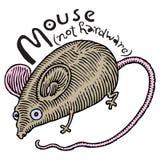 Echte muis (niet hardware) Stock Afbeelding
