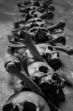 Echte schedels van de beenkerk van Kutna Hora, Tsjechische Republiek Stock Foto
