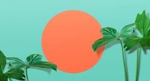 Echte tropische bladeren op pastelkleurachtergrond Het concept van de zomer royalty-vrije stock foto