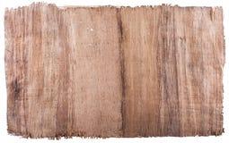 Echtes Papyrusblatt Lizenzfreies Stockfoto