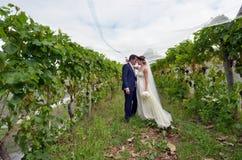 Echtgenoot en vrouw op hun huwelijksdag Stock Fotografie
