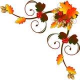 Eckverzierung mit einem Blumenstrauß des Herbstes Stockfoto