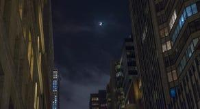 Eclipse lunare Fotografia Stock