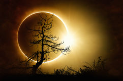 Eclipse solar total en cielo oscuro fotografía de archivo