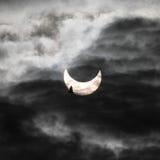 Eclipse solare ed uccello Fotografie Stock