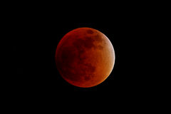 Eclipse total do sangue super fotografia de stock royalty free