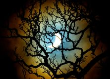 Eclissi solare, il 20 marzo 2015 Immagini Stock Libere da Diritti