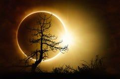 Eclissi solare totale in cielo scuro fotografia stock