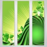 Eco与叶子的绿色背景。 库存图片