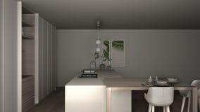 eco友好的公寓、海岛、桌、凳子和开放内阁的,窗口,竹子,水耕的花瓶白色和最低纲领派厨房, 向量例证