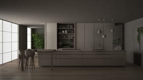 eco友好的公寓、海岛、桌、凳子和开放内阁的,窗口,竹子,水耕的花瓶白色和最低纲领派厨房, 库存例证