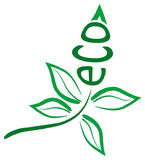 eco叶子 库存图片