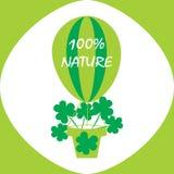 Eco商标、标志或者标签 免版税库存照片