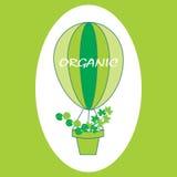 Eco商标、标志或者标签 图库摄影