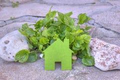 Eco在的房子概念绿色植物和石头,绿色eco房子象本质上 免版税库存照片