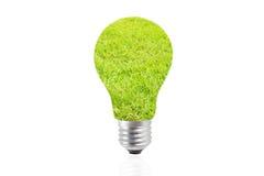 Eco在草-绿色能量概念的能量电灯泡 库存图片
