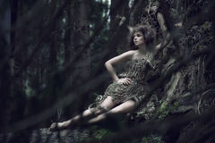 eco夫人位于的树干 库存照片