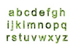 eco字体绿色 免版税库存照片
