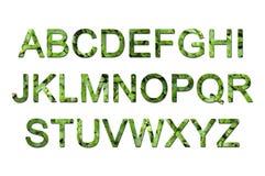 eco字体绿色 免版税库存图片