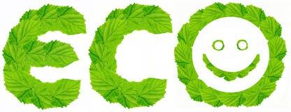 eco徽标 库存照片