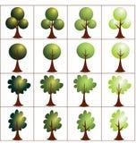 Eco抽象绿色发辫 设置树象 免版税库存图片