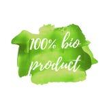 Eco新有机绿色食物传染媒介词,文本,象,标志,海报,商标在手边得出的绿色油漆背景例证 免版税库存照片