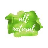 Eco新有机绿色食物传染媒介词,文本,象,标志,海报,商标在手边得出的绿色油漆背景例证 库存图片
