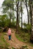 Eco旅游业 图库摄影
