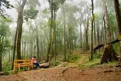 Eco旅游业 免版税图库摄影