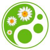 Eco标签。绿色标志 库存照片
