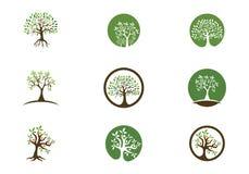 Eco树商标模板 皇族释放例证