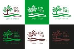Eco树商标 商标事务的,树商标,树商标模板下载-传染媒介下载模板传染媒介 向量例证