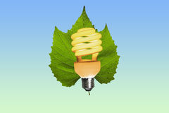 Eco电灯泡在一片绿色叶子点燃了 图库摄影