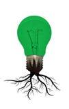 Eco电灯泡 免版税库存照片