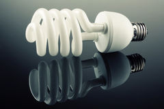 Eco电灯泡 免版税图库摄影