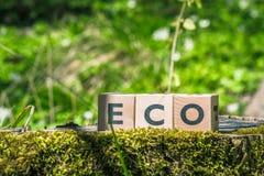 Eco签到一个绿色森林 免版税库存图片