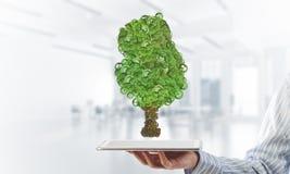 Eco绿化树提出的环境概念作为运作的机制或引擎 免版税库存照片